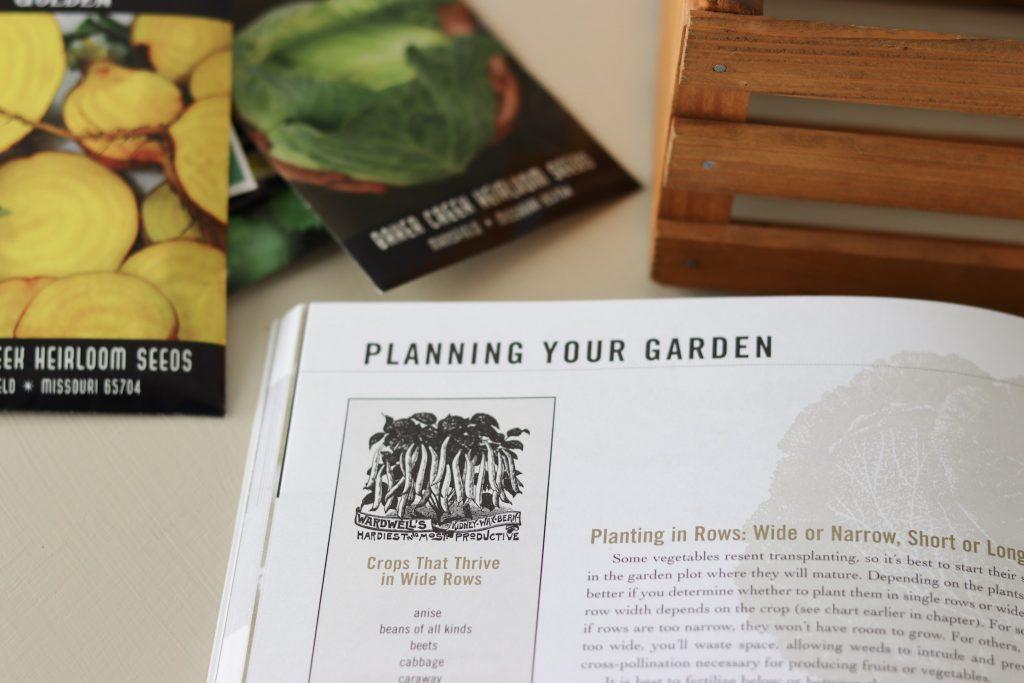 Planning a Vegtable Garden